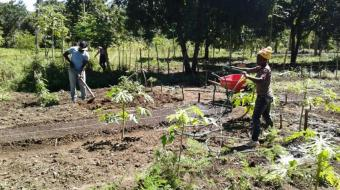 Agronomy technicians Songé Gilles and Aneus St. Jusma work in the experimental gardens at the Grepen Center in Gros Morne, Haiti. (Geri Lanham)